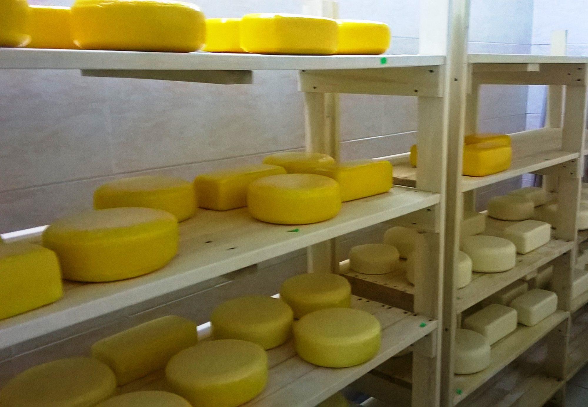 Проектирование, строительство, монтаж заводов по переработке молока